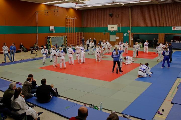 Über 400 Grundschüler aus Holzwickede treffen sich morgen zum Tag des Judos auf den Matten in der Hilgenbaumhalle. (Foto: privat)