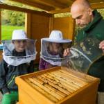 So geht Naturschutz heute: Paul-Gerhardt-Schule erhält Umweltpreis