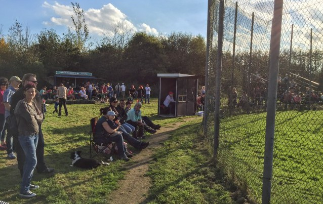 Wenn auch nicht in der neuen Saison, doch so in der Saison 2016 hoffen die Joboxers wieder so viele Zuschauer bei ihren Heimspielen in Holzwickede begrüßen zu können. (Foto: privat)