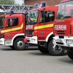 Erneuter Feuerwehreinsatz: Unkraut samt großer Konifere abgebrannt