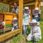 Paul-Gerhardt-Schule lässt fleißige Bienen jetzt auch im weltweiten Internet fliegen