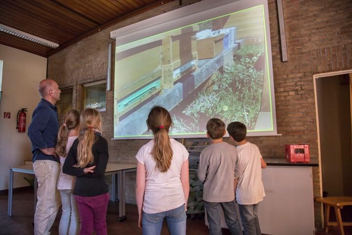 In der Paul-Gerhardt-Schule werden die  spannenden Ereignisse an den schuleigenen BIOenenstöcklen jetzt mit einer Webcam in die Schule und ins weltweite Internet übertragen. Die Kinder können die ihre BIenen jetzt auf Großleinwand in der Schule beobachten:  (Foto: Peter Gräber)