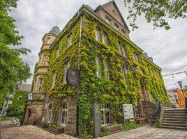 Der Efeu- und Weinbewuchs wird ab heute vom alten Rathauses entfernt. Etwa fünf Jahre soll es dauern, bis das Grün wieder bis zum Dachfirst hochgewachsen ist. (Foto: P. Gräber - Emscherblog)