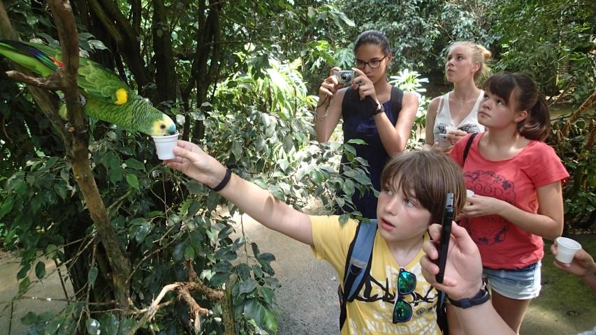 Im Butterfly Park konnten die Teilnehmer der vom Kreis organisierten Ferienfreizeit Papageien mit der Hand füttern. Foto: Kreis Unna