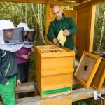 Holzwickeder können Paul-Gerhardt-Schule mit ihrer Stimme helfen