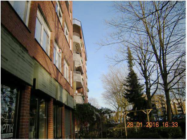 Anwsohner fordern die Fällung der Platanen Kirchstraße 3 bid 5. Der Umwerltausschuss lehnte das einstimmig ab. Die Bäume seien ein wichtig für die Luft- und Klimaverbesserung. (Foto: privat)