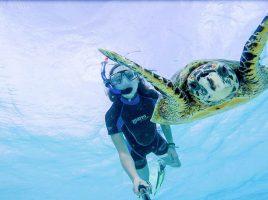 Für Mara das absolute Highlight: Tauchen mit einer Schildkröte auf den Malediven. (Foto: Urlaubsguru - Mara Molitor)