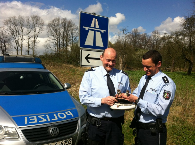 ie Polizeihauptkommissare Schrot (l.) und Nottebohm mit den Küken, die sie gerettet haben. (Foto: Polizei)