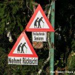 """""""Sicher und mobil"""" Verkehrssicherheitstag im Forum"""