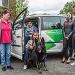 Drama um Diego: Beherzte Helfer retten Schäferhund vor Erstickungstod
