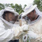 Bienenfest am Emscherquellhof