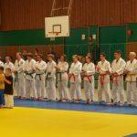 Jiu Jitsu: Sommerlehrgang für Groß und Klein