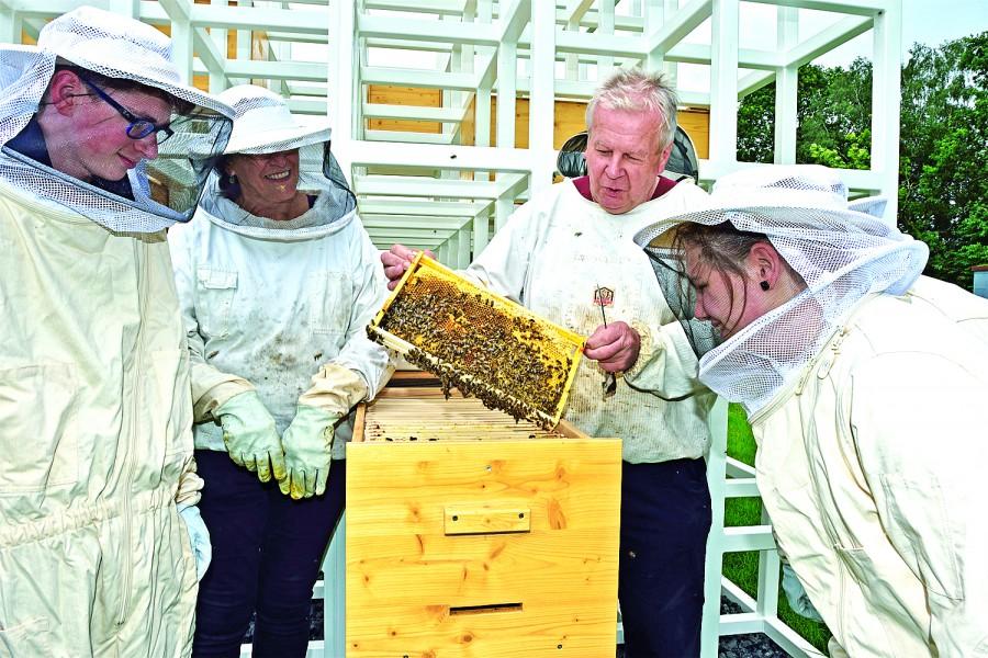 Die Jugendlichen bei ihrem Besuch auf dem Emscherquellhof an den Bienen-Häusern des schwedischen Künstlers Henrik Håkansson. (Foto: Ralph Lueger/Emschergenossenschaft).