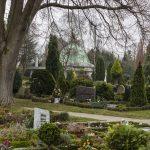 Hund durch illegales Pflanzengift auf Friedhof  tödlich vergiftet