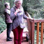 Märchenhafter Spaziergang im Hixterwald
