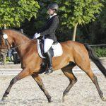 RuF Hengsen-Opherdicke: Springlehrgang mit Elmar Pollmann-Schweckhorst