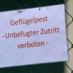Geflügelpest: Stallpflicht für Bestände in Werne und Fröndenberg