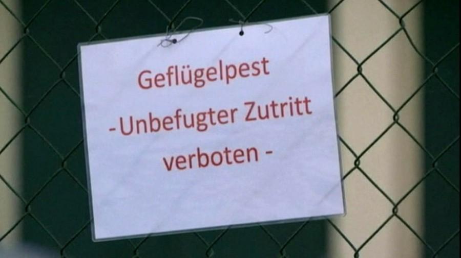 Noch gilt im Kreis Unna und der Stadt Hamm keine Stallpflicht. Doch die Kreis-Veterinärbehörde rät zur Vorsicht. (Foto: Kreis Unna)