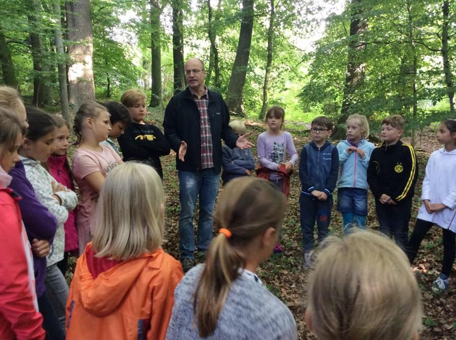 Das Klassenzimmer Wald