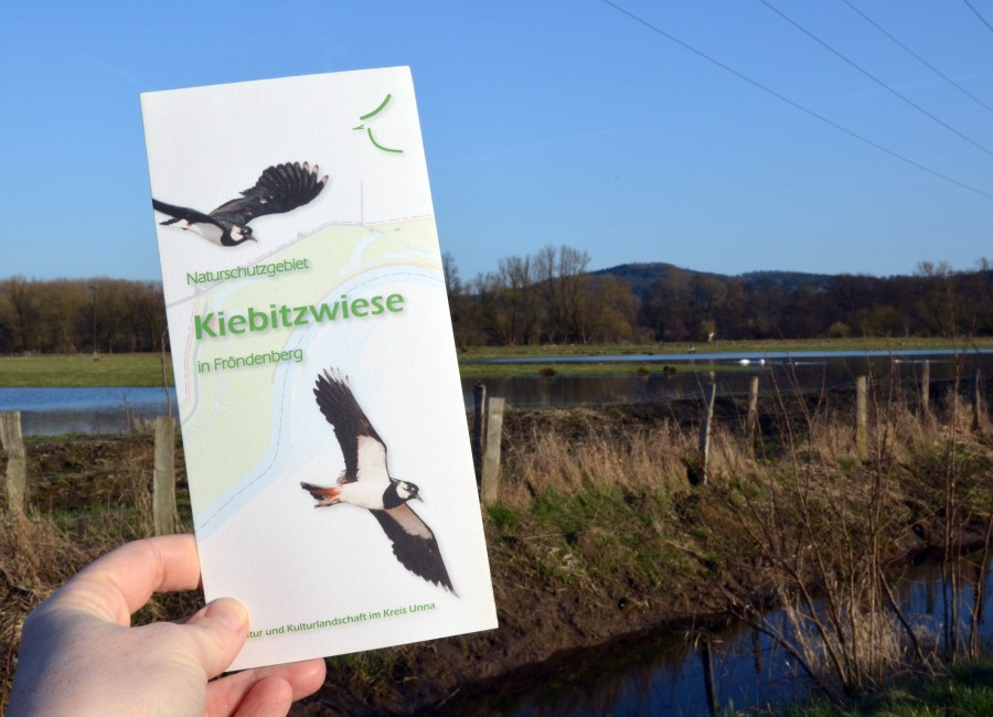 Über die Naturschutzgebiete im Kreis Unna informieren meist große Tafeln, oft gibt es auch Flyer – wie hier im Naturschutzgebiet Kiebitzwiese in Fröndenberg/Ruhr. (Foto: Birgit Kalle – Kreis Unna)