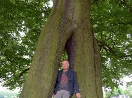 Thomas Rühle aus dem Fachbereich Natur und Umwelt des Kreises zeigt die Besonderheit der so genannten Napoleonsbuche in Lünen – die beiden Stämme, die zu einem werden. (Foto: Birgit Kalle – Kreis Unna)