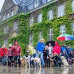 Ausgetrickst und veräppelt: Holzwickedes Hundehalter sind sauer