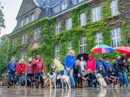 Holzwickedes Hundehaltere formieren sich: Sie wünschen sich eine umzäunte Freilauffläche für ihre Hunde und sammeln nun Unterschriften für einen Bürgerantrag. (Foto: P. Gräber - Emscherblog.de).