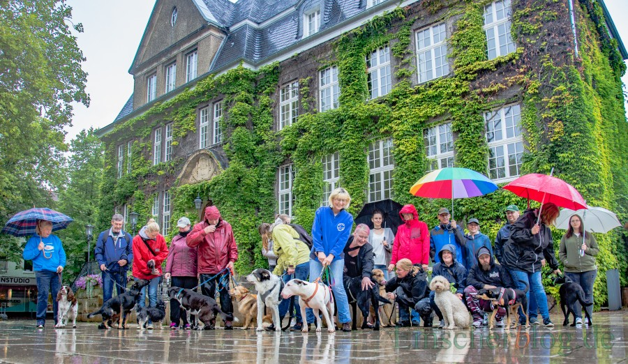 Holzwickedes Hundehalter sind sauer. Nicht darüber, dass ihr Antrag auf eine Freilauffläche für Hunde abgelehnt wurde, sondern auch wie mit ihnen umgegangen worden ist. (Foto: P. Gräber - Emscherblog.de).