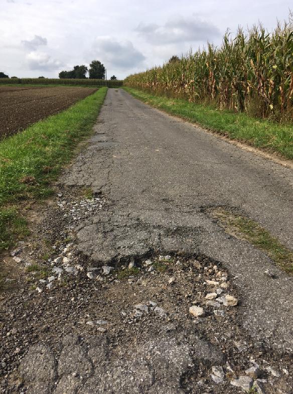Die FDP sieht dringenden Handlungsbedarf bei der SAanierung der Wirtschaftswege in den Außenbereichen: Der Weidenweg ist nur ein Beispiel von vielen. (Foto: privat)
