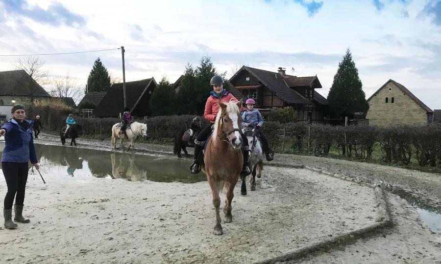 Bereits in den Osterferien 2018 bietet die Ev. Jugend wieder eine Ponyfreizeit für Mädchen auf dem Hof Hilbeck bei Werl an. (Foto: privat)