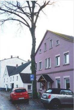 Auchg dem Abholzen dieser kerngesunden Winterlinde in der Rausinger Straße hat der Umweltausschuss zugestimmt. (Foto: Gemeinde Holzwickede)