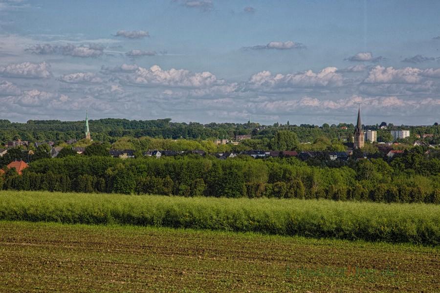 Die CDU fordert die Ausweisung von fünf Hektar neuer Gewerbeflächen an der Vincenz-Wiederholt-Straße. (Foto: P. Gräber - Emscherblog.de)