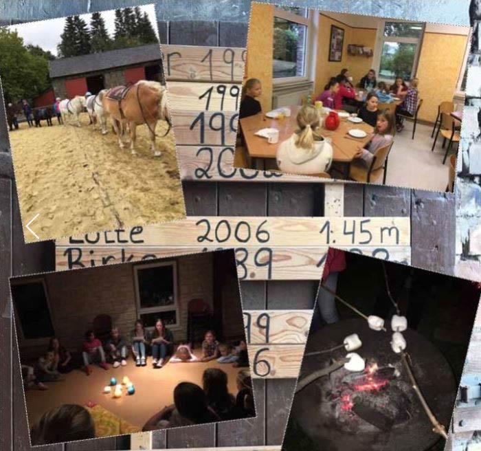 Collage bisheriger Freizeiten auf dem Ponyhof Hilbeck in Werl. (Foto: Ev. Jugend)