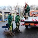 Kreis fördert Streuobstwiesen: Grundeigentümer erhalten Pflanzgut