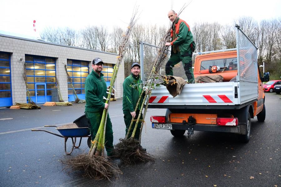 Die Obstbäume für Streuobstwiesen werden von Sebastian Herzog (l.), Sebastian Wohlgemuth und Hartmut Antonius Kemper (auf dem Wagen) aufgeladen. Foto Max Rolke - Kreis Unna