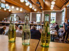 Der Gemeinderat hat in seiner Sitzung heute mit großer Mehrheit den Kita-Standort auf einem alternativen Standort im Emscherpark beschlossen. Lediglich zwei Birken für den Neubau gefällt werden. (Foto: P. Gräber - Emscherblog.de)
