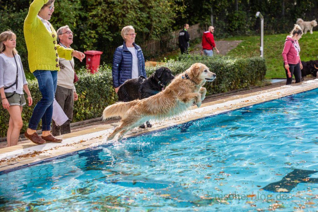 Die Freibadsaison endet am kommenden Sonntag - am Wochenende (21./22. September) darauf dürfen sich nur noch vierbeinige Gäste in die Fluten stürzen. (Foto: P. Gräber - Emscherblog.de)