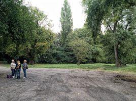 Blick auf den geplanten Standort der neuen AWO-Kita im Emscherpark. Auf Vorschlag der Verwaltung sollen für den Neubau elf Bäume (Bildhintergrund) dafür gefällt werden. (Foto: P. Gräber - Emscherblog.de)