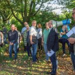 Umweltausschuss stimmt für Erhalt der Bäume und gegen den Kita-Neubau