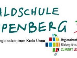 Waldschule Cappenberg