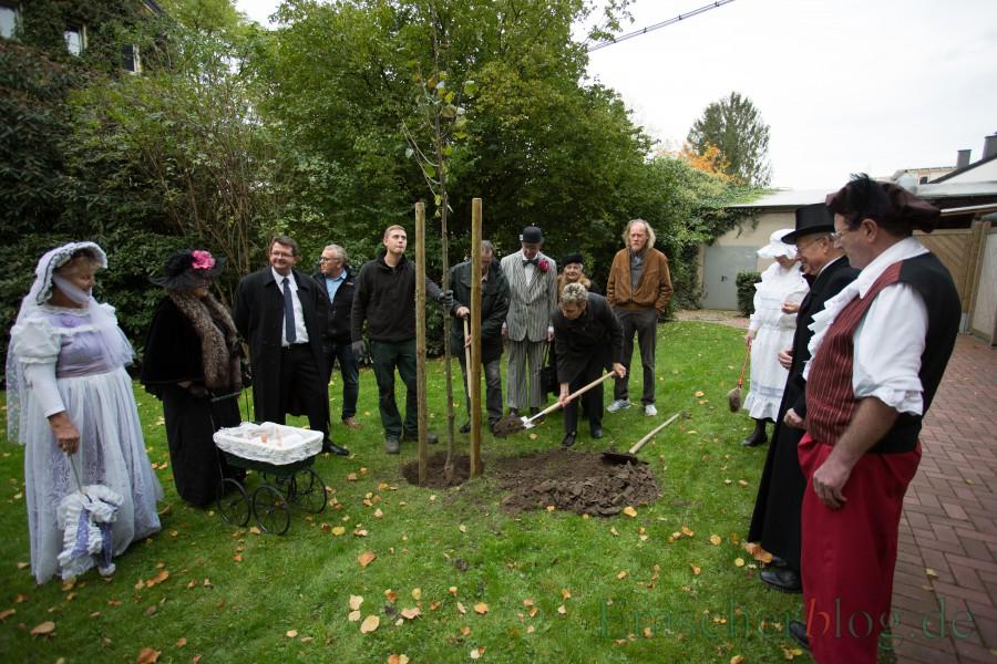 Die beiden Bäume, die zum 100. Geburtstag des Rathauses vor drei Jahren hinter das Rathaus gepflanzt wurden (Foto), müssen dem Rathaus-Neubau weichen und sollen in den Emscherpark umgepflanzt werden.  (Foto: P. Gräber - Emscherblog.de)