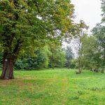 Baubetriebshof fällt sechs Bäume im Emscherpark