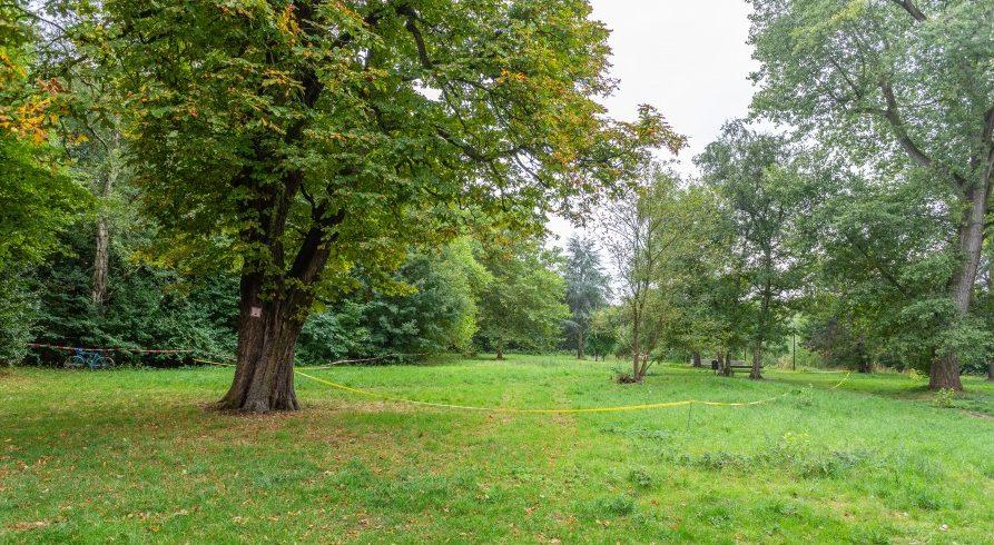 In dem Bereich hinter dem gelben Flatterband liegt das Baufeld für die geplante Kindertagesstätte. (Foto: P. Gräber - Emscherblog.de)
