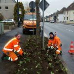 Gemeinde wird grüner und bunter