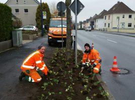 Mitarbeiter des Baubetriebshofes sind weiterhion dabei, die Pflanzbeete entlang der Nord- und Hauptstraße zu verschönern. (Foto: privat)