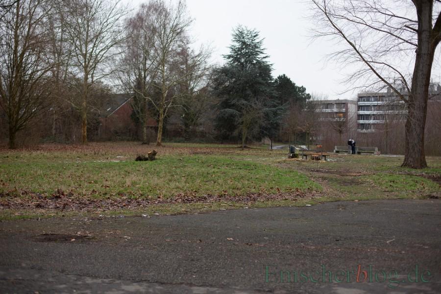 Blick auf das Baufeld der Kindertagesstätte im Emscherpark. (Foto: P. Gräber - Emscherblog.)