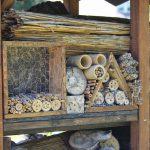 Paul-Gerhardt-Schule bastelt Nisthilfen und sucht noch Baumaterial