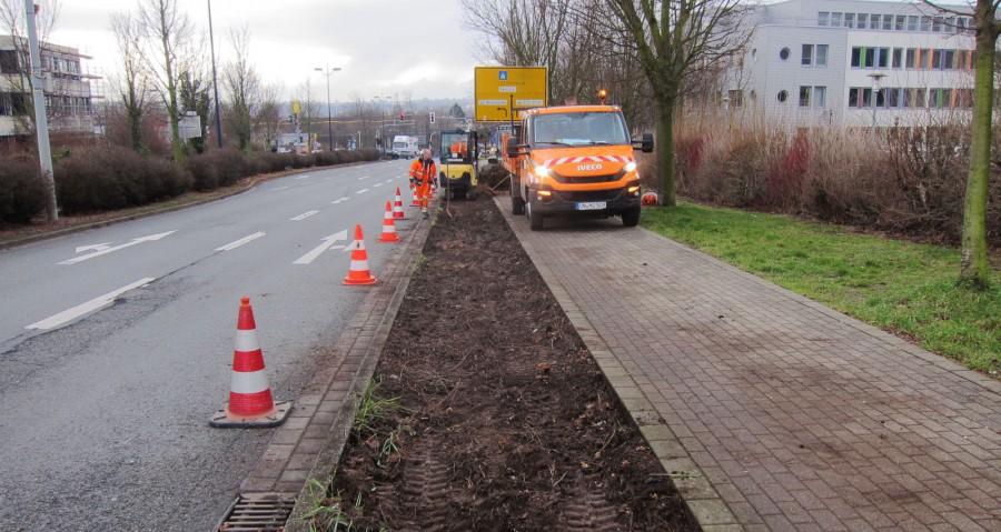 Die Gemeinde lässt gerade neue Wildblumenwiesen in den Beeten entlang der Nordstraße zwischen Autobahn und Flughafen anpflanzen. (Foto: Gemeinde Holzwickede)