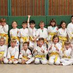 Holzwickeder Judo-Nachwuchs erkämpft neue Gürtel