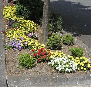 Die Gemeinde sucht engagierte Paten für öffentliche Beete und Grünflächen. (Foto: Gemeinde Holzwickede)